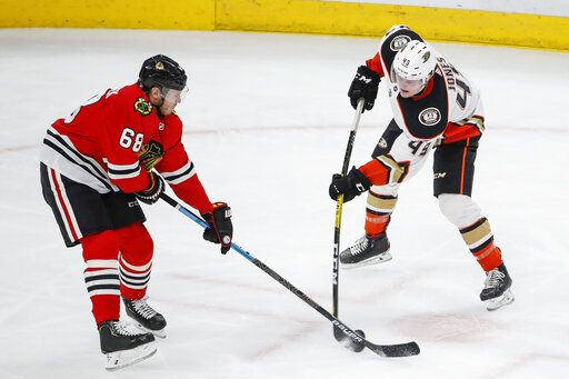Chicago Blackhawks defenseman Slater Koekkoek (68) works for the puck against Anaheim Ducks left wing Max Jones (49) during the second period of an NHL hockey game Saturday, Jan. 11, 2020, in Chicago.