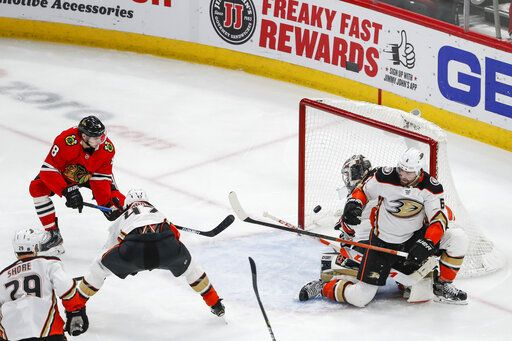 Chicago Blackhawks left wing Dominik Kubalik (8) scores against the Anaheim Ducks during the second period of an NHL hockey game Saturday, Jan. 11, 2020, in Chicago.