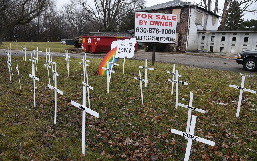 Thirty-three white crosses were placed for the dogs that died in a fire in a former dog kennel near Carol Stream one year ago Tuesday.