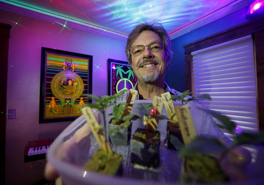 Peter Maccaro of Elgin, who has marijuana-related felony convictions from 1997, wants to apply for a marijuana craft growing license. Maccaro used to work for Aramark Corp. and now is a grower at a hemp farm in Huntley.