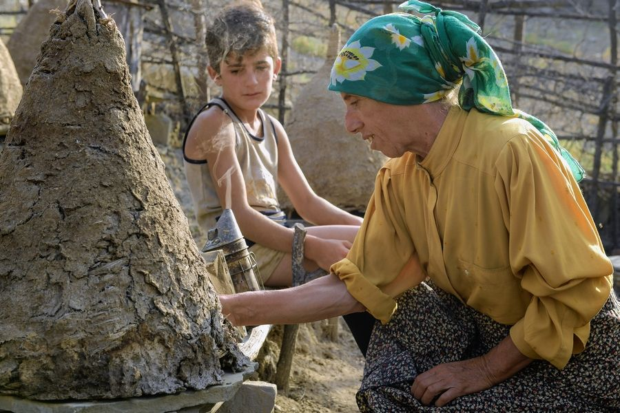 """Honeyland,"" a Best Documentary Feature nominee in the 2020 Academy Awards, follows Hatidze who lives with her ailing mother in the mountains of Northern Macedonia, making a living cultivating honey using ancient beekeeping traditions."