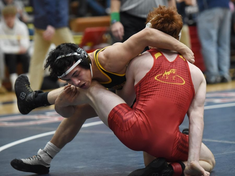Montini's Fidel Mayora and Batavia's Mikey Caliendo wrestle in their 145-pound championship bout at the Conant wrestling sectional meet Saturday in Hoffman Estates.