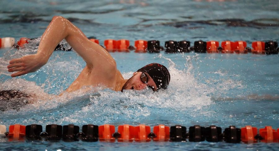 St. Charles East's Calvin Windle swims the 200 free Saturday.
