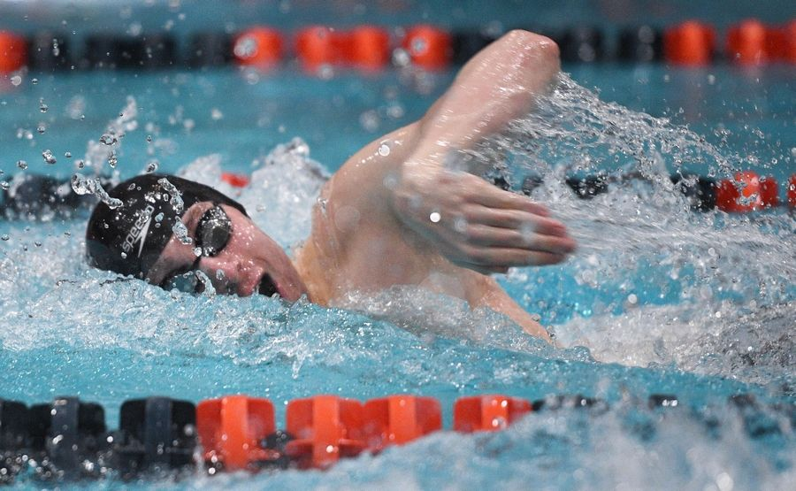 St. Charles East's Calvin Windle competes in the 200-yard freestyle at the state finals in Evanston on Saturday.