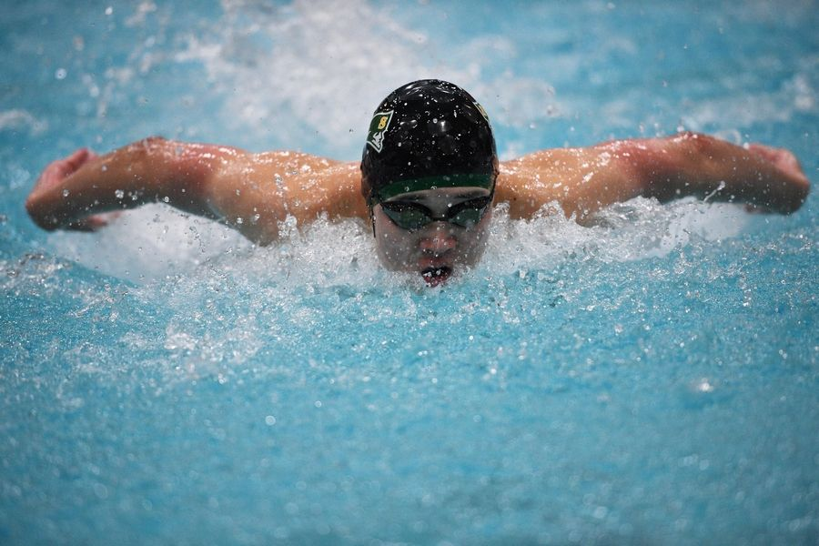 Stevenson's Josh Song competes in the 100-yard butterfly at the IHSA state boys swimming final in Evanston on Saturday.
