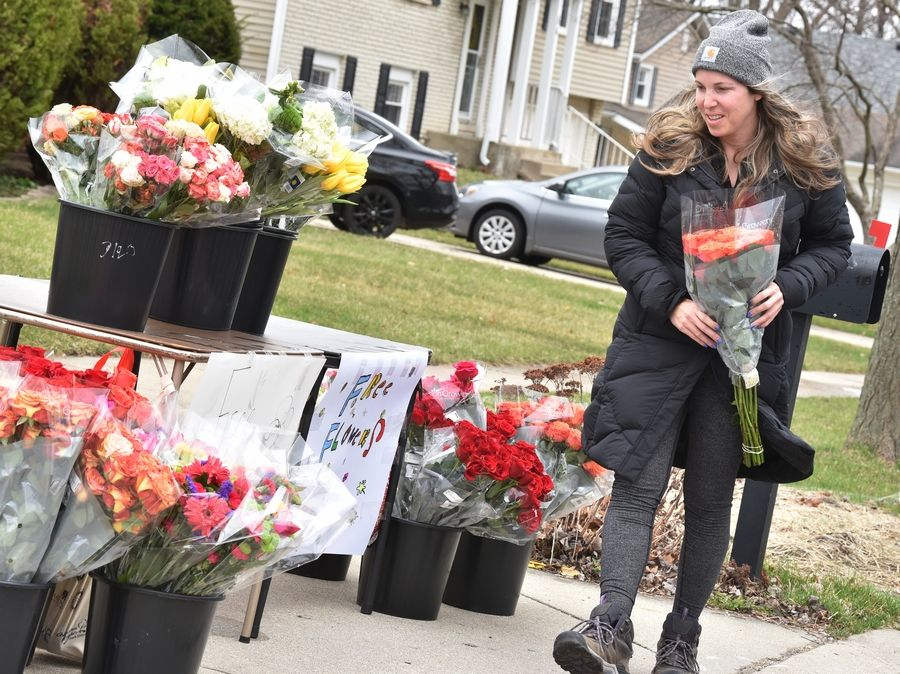 Amy Spizziri of Buffalo Grove stops by the home of Krystal and Danny Glassman in Buffalo Grove to pick up free flowers Sunday The Glassmans set up a table full of flowers for anyone who wants to stop by and pick them up.