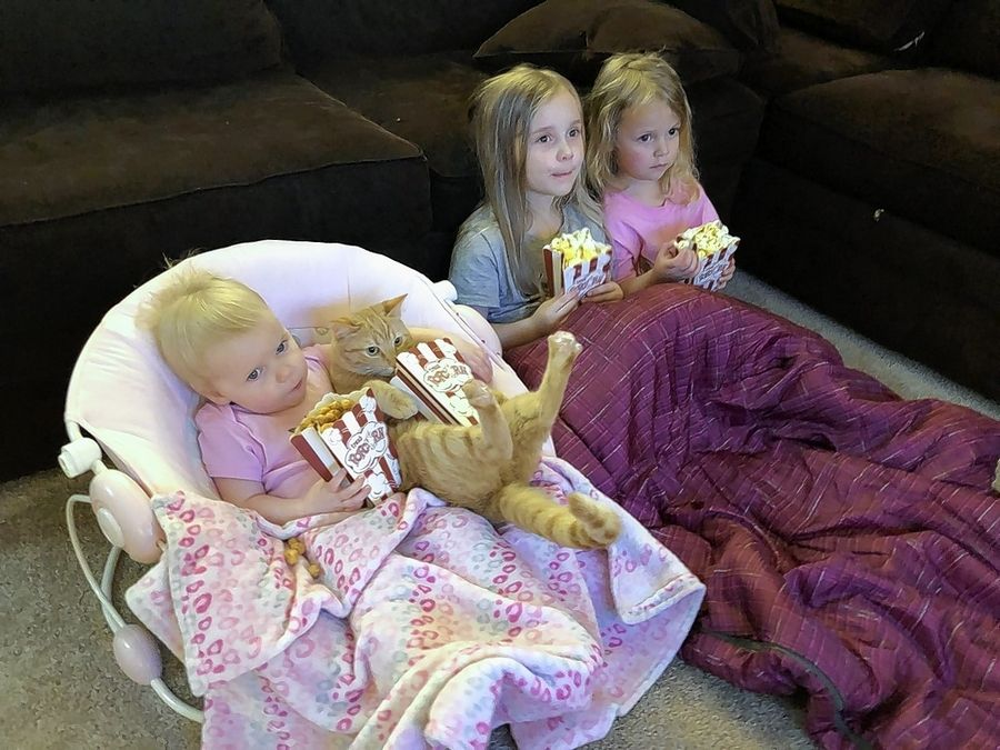 Carrot the Cat settles in to watch a movie with sisters, from left, Claire, 1, Abby, 5, and Hannah, 3, Merryn, at their Elgin home. Carrot, who has 189,000 Instagram followers and fans including Ellen DeGeneres, is providing some laughter and joy during the COVID-19 pandemic.