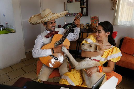 The Mariachi Duo Villa Maria, Sergio Carpio, left, and Melissa Villar, accompanied by their dog Güiro, perform via the internet for a client during mothers' day, from their apartment in Mexico City, Sunday, May 10, 2020. The duo is performing Mariachi serenades remotely as a way to circumvent the collapse of their livelihood caused by the new coronavirus pandemic lockdown. The duo charges the equivlant of $30 per serenade that can be payed to their bank account via direct deposit.