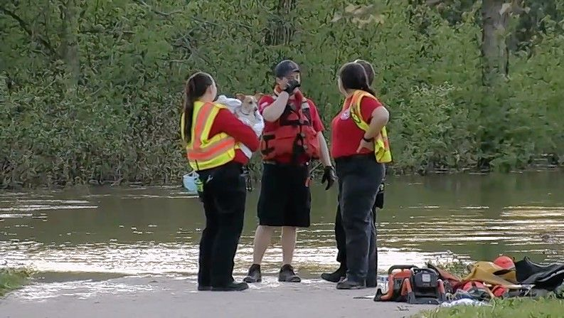 Rescuers were searching for a woman Friday who was swept into the West Branch of the DuPage River near downtown Winfield, along with two of her dogs. One dog was rescued.