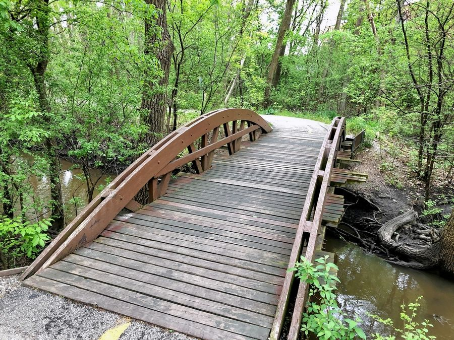 Two bridges for the regional Palatine Trail bicycle and pedestrian path are to be replaced as part of other improvements. This bridge over Salt Creek would be replaced just north of Palatine Public Library.