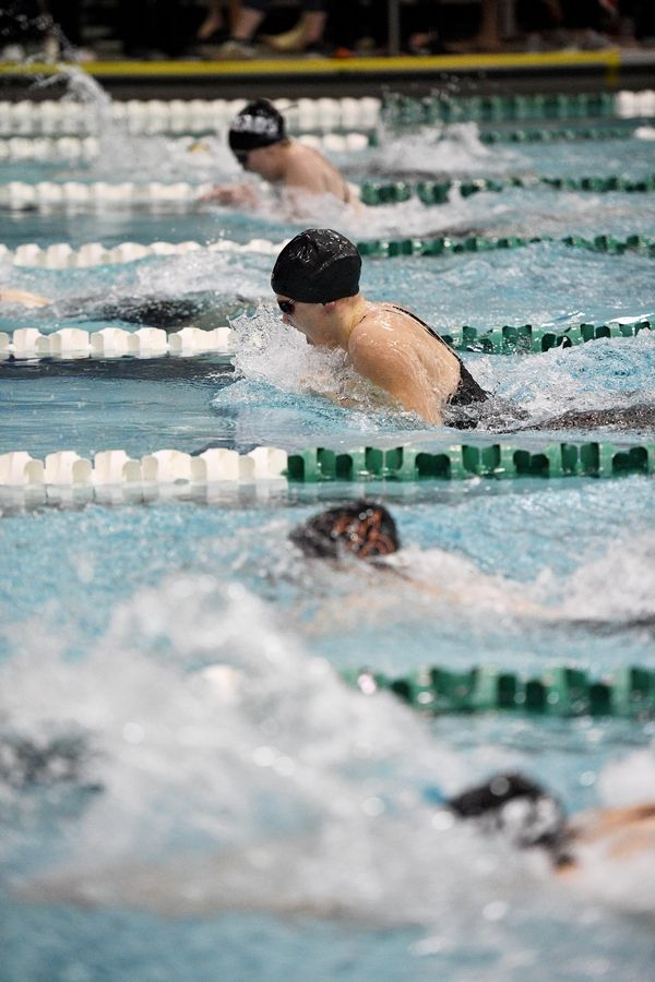 Downers Grove North's Libby Benge competes in the 100-yard breaststroke at the girls state swimming championships.