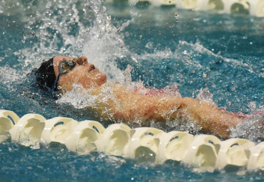 St. Charles North's Megan Armstrong swims the 100-yard backstroke during the girls state swimming preliminaries.