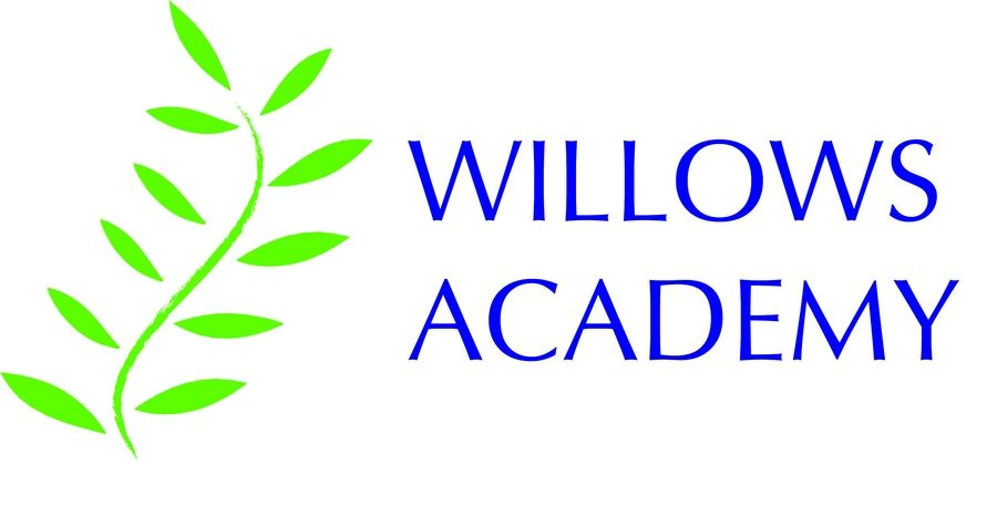 The logo for Willows Academy in Des Plaines.