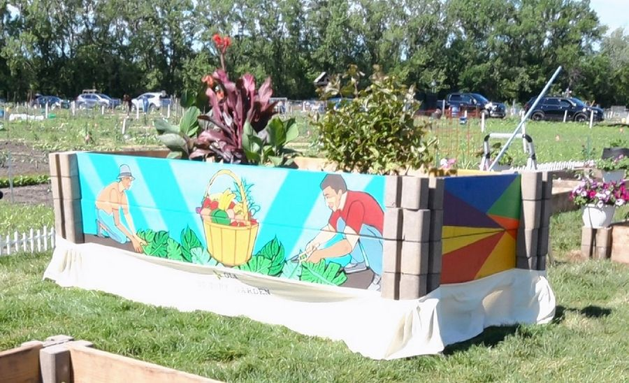 Several raised garden beds now on display at a garden plot in Naperville have been painted in a project by the Obama Legacy Initiative to support food pantries.