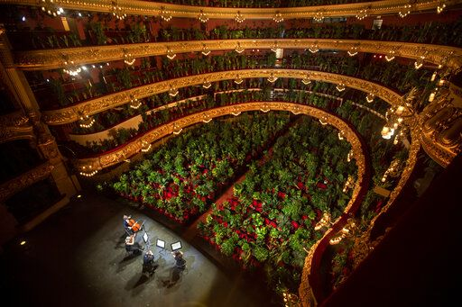 "Musicians rehearse at the Gran Teatre del Liceu in Barcelona, Spain, Monday, June 22, 2020. The Gran Teatre del Liceu reopens its doors, in which the 2,292 seats of the auditorium will be occupied on this occasion by plants. It will be on 22 June, broadcast live online, when the UceLi Quartet string quartet performs Puccini's ""Crisantemi"" for this verdant public, brought in from local nurseries."