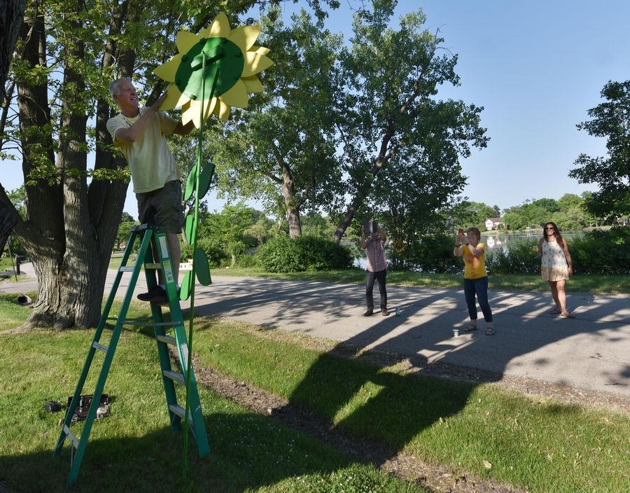 Mark Elfstrand installs his 10-foot-tall sunflower in a pop-up art gallery on the western shore of Hillcrest Lake in Prospect Heights as his wife, Cathy, takes a photo and art teacher Mara Lovisetto watches with Andy Tully, left.