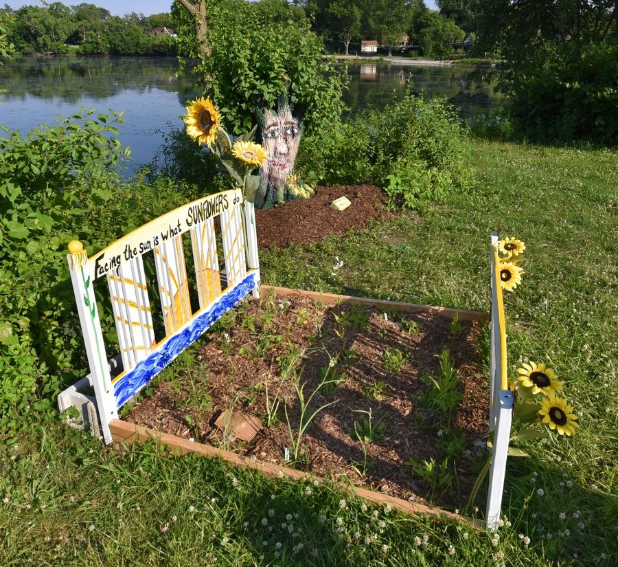 "The Prospect Heights Natural Resources Commission added these native plants to the ""The Sunflower Project 2020"" pop-up art gallery on the western shore of Hillcrest Lake."