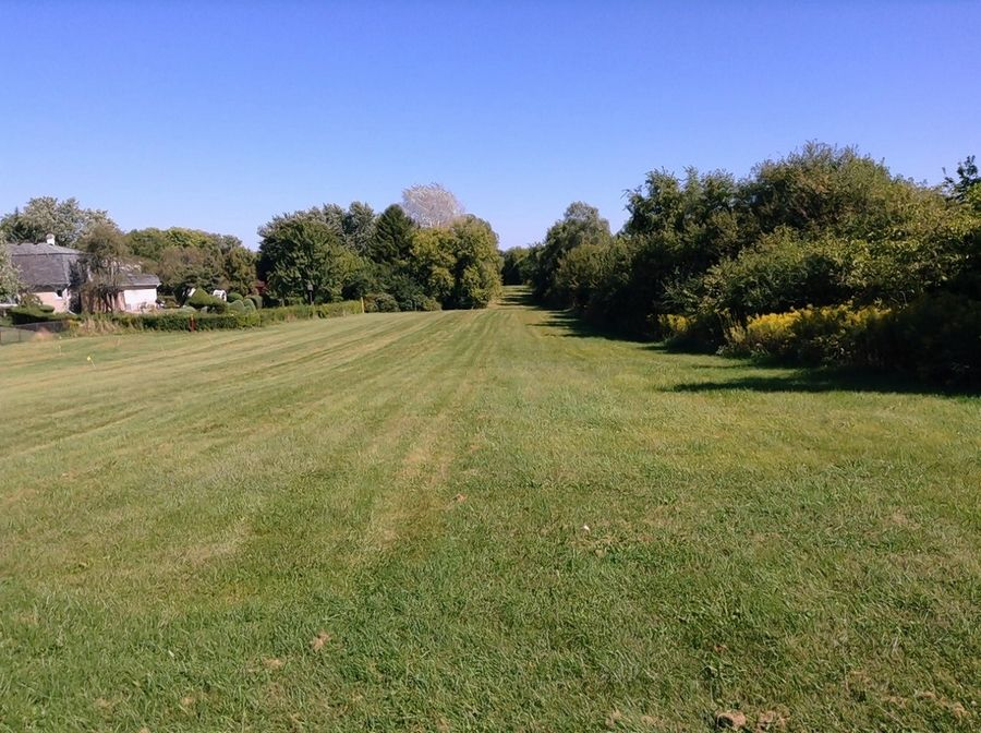 This is the northwest corner of the 62-acre property between Summit Drive and Plum Grove Road in Schaumburg where Glendale Heights-based Nitti Development LLC has proposed a 149-home development named Braxton Woods.