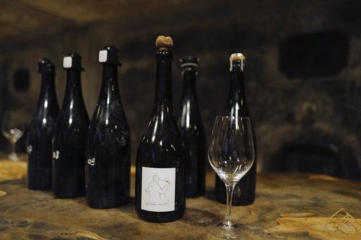 Champagne bottles for tasters are displayed in the cave of Champagne producer Anselme Selosse in Avize, in the Champagne region, east of Paris, Tuesday, July 28, 2020. Producers in France's eastern Champagne region, headquarters of the global industry, say they've lost about 1.7 billion euros ($2 billion) in sales this year, as turnover fell by a third -  a hammering unmatched in living memory, and worse than the Great Depression.