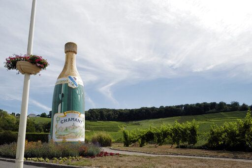 A Champagne advert is displayed at the entrance of the village in Avize, in the Champagne region, east of Paris, Tuesday, July 28, 2020. Producers in France's eastern Champagne region, headquarters of the global industry, say they've lost about 1.7 billion euros ($2 billion) in sales this year, as turnover fell by a third -  a hammering unmatched in living memory, and worse than the Great Depression.