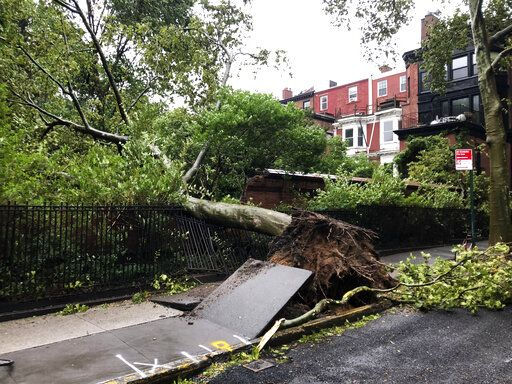 A tree uprooted by high winds lays on a fence in Brooklyn Heights Tuesday, Aug. 4, 2020, in New York as Tropical Storm Isaias is expected to hit the Northeastern U.S.
