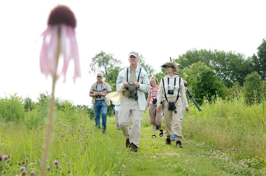 Kane County Audubon president Bob Andrini leads a group bird watchers at Dick Young Forest Preserve in Batavia in 2014. On Wednesday, Sept. 9, a bench and trail will be dedicated to Bob and his wife, Kathy, for their longtime service to the organization and the community.