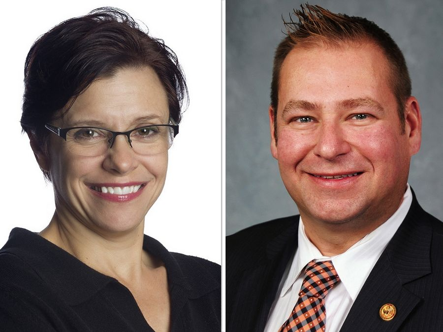 Suzanne Ness, left, and Allen Skillicorn are the candidates in the state House District 66 race.