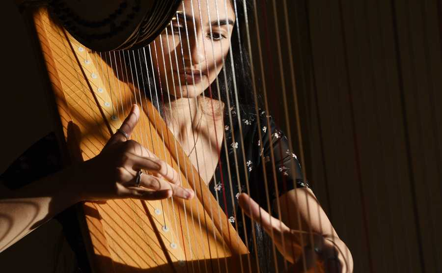 Glenbrook North sophomore Sonia Thakkar played the harp for a virtual live concert to entertain and relieve the stress of front line health care workers. She also raised over $3,000 to obtain quality PPE kits for front line workers in India.
