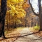 Where to ride your bike for fall colors (in coronavirus times)
