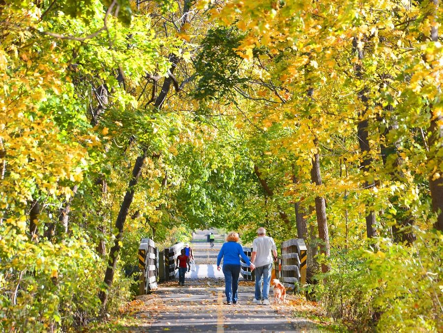 The Prairie Trail of McHenry County in Algonquin offers a tunnel of colorful trees in the fall.