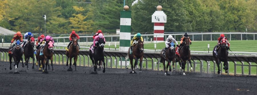 Horses head for the finish line during the second race at Arlington Park Saturday.