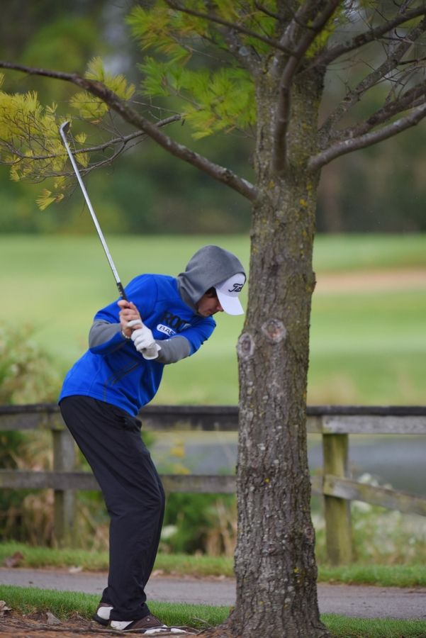 Burlington's Matthew Lemon hits from under a tree at the Fox Valley Conference boys golf tournament at Randall Oaks Golf Course in West Dundee Thursday.