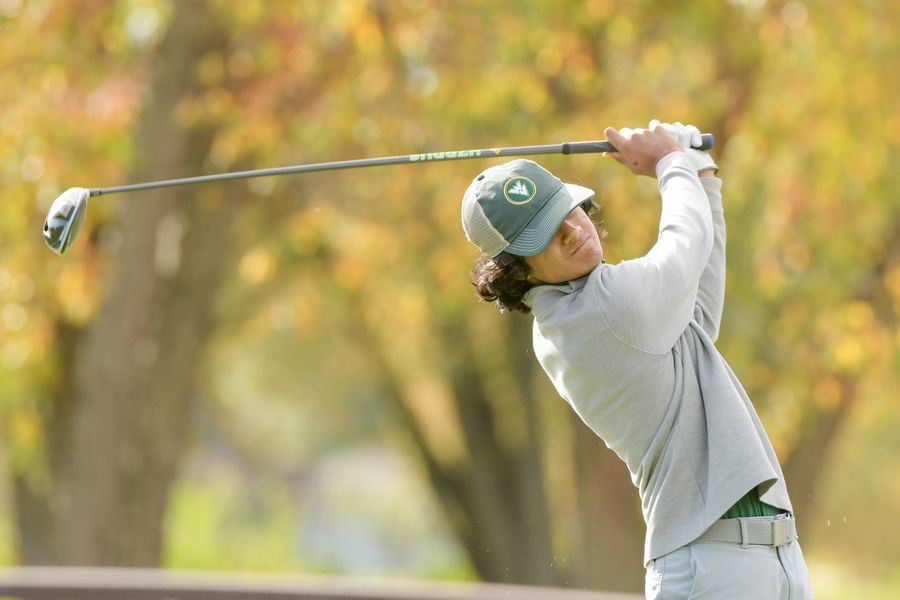 Waubonsie Valley's Salil Khanduja watches his drive from the 14th tee during the Boys Golf Class 3A Oswego Sectional at Blackberry Oaks Golf Course in Bristol Oct. 13.