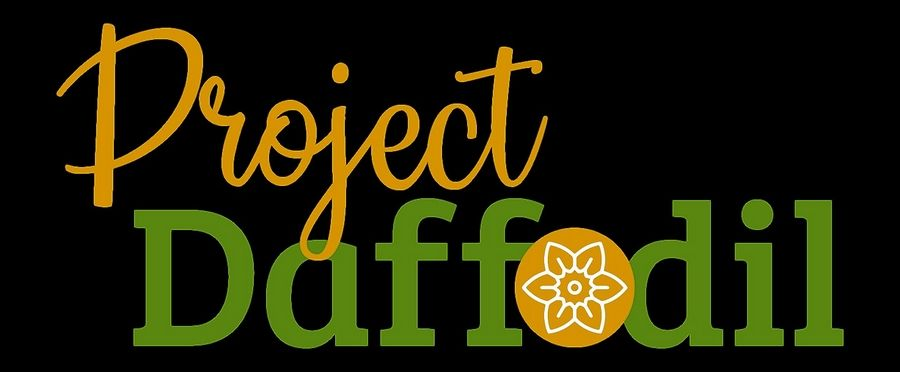 A team of volunteers will participate in Project Daffodil today with the goal of planting 5,000 daffodil bulbs at Mount St. Mary Park in St. Charles.