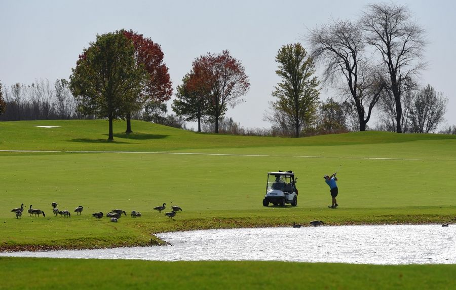 Publicly owned suburban golf courses experienced a resurgence in popularity during the pandemic as the sport became a rare opportunity for residents to participate in a recreational activity.