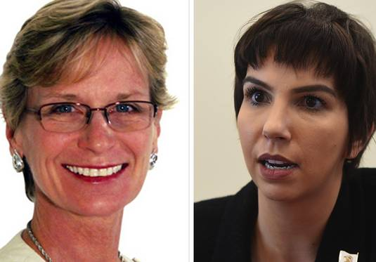 Republican Laura Hois of Downers Grove, left, and incumbent Anne Stava-Murray, a Naperville Democrat, are vying to represent the 81st state House District.