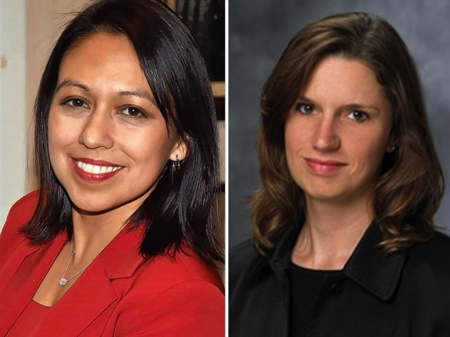 Gloria Schmidt Rodriguez, left, and Erin Cartwright Weinstein, are candidates for Lake County clerk of the Circuit court in the Nov. 3 election.