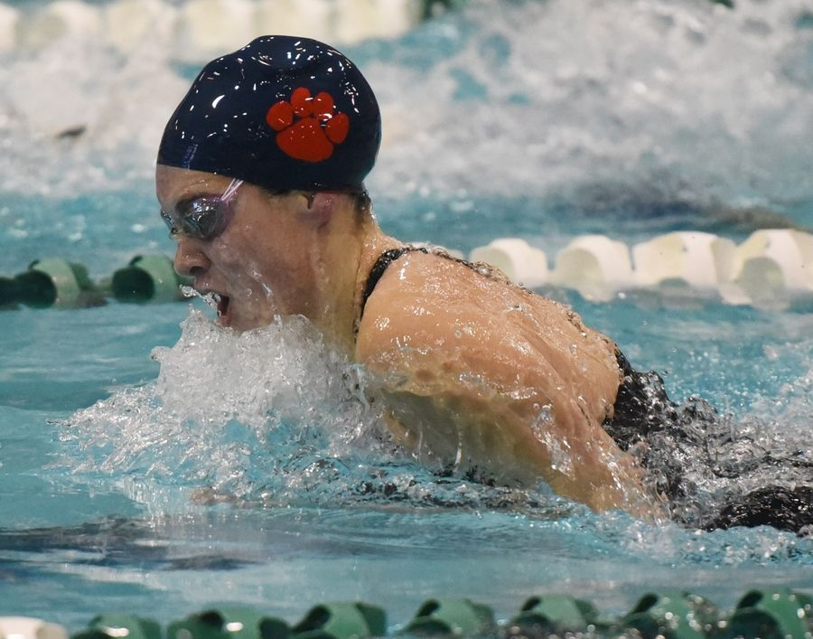 West Chicago's Ashley Sego swims the 100-yard breaststroke during the girls state swimming preliminaries at New Trier High School last season. West Chicago will compete in the St. Charles North sectional on Saturday.
