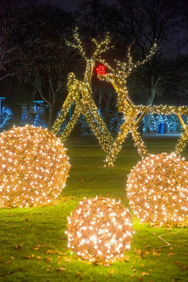 "Brookfield Zoo's 39th annual outdoor ""Holiday Magic"" returns for select dates Friday, Nov. 27, through Thursday, Dec. 31."