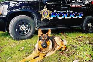 A Campton Hills police officer is raising money to support Koda and his K-9 unit.