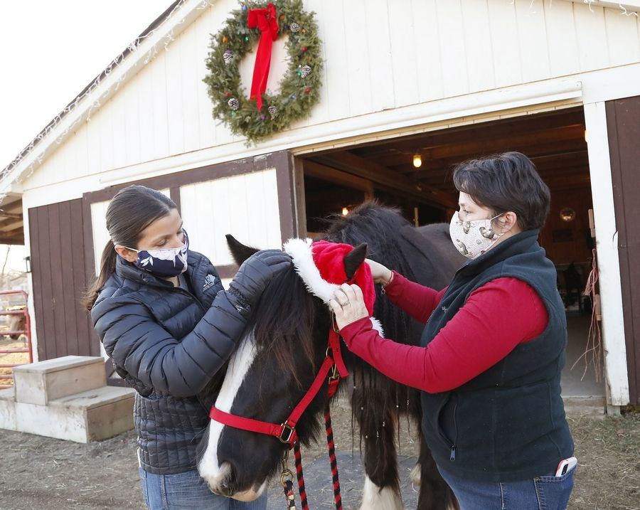St. Charles Township neighbors Jackie Vrchota, left, and Christa Stevens put a Santa hat on a horse named Friday during their Hug a Horse event at Stevens' stable. The women launched the idea in September to share their love of horses.