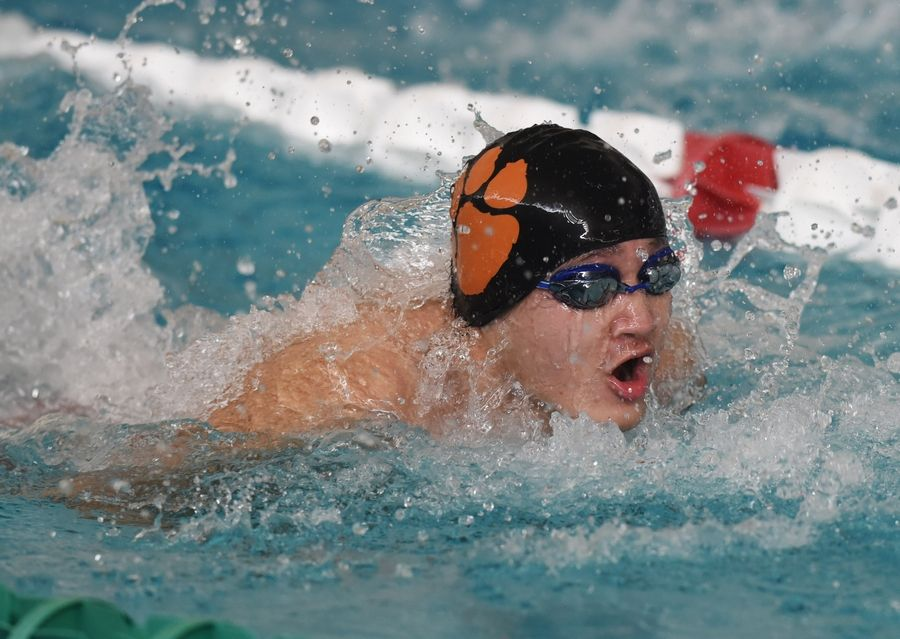 Libertyville's Lawrence Wang swims the 100-yard butterfly during the Lake County boys swimming meet at Stevenson High School in Lincolnshire Saturday.