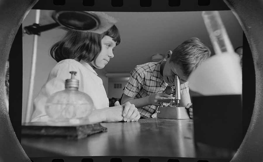 The Daily Herald Archive, Assignment # 3,221, Mike Seeling photo: Blackhawk school students work on a project in their science class in Bensenville in March of 1966.