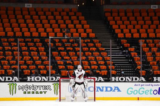 FILE - Arizona Coyotes goaltender Adin Hill guards his net with empty seats behind him during the first period of an NHL hockey game against the Anaheim Ducks in Anaheim, Calif., in this Friday, April 2, 2021, file photo. While the NFL, NBA and Major League Baseball are moving to relax virus protocols when a vast majority of a team's players, coaches and staff are vaccinated, the NHL finds itself in an uncomfortable position.