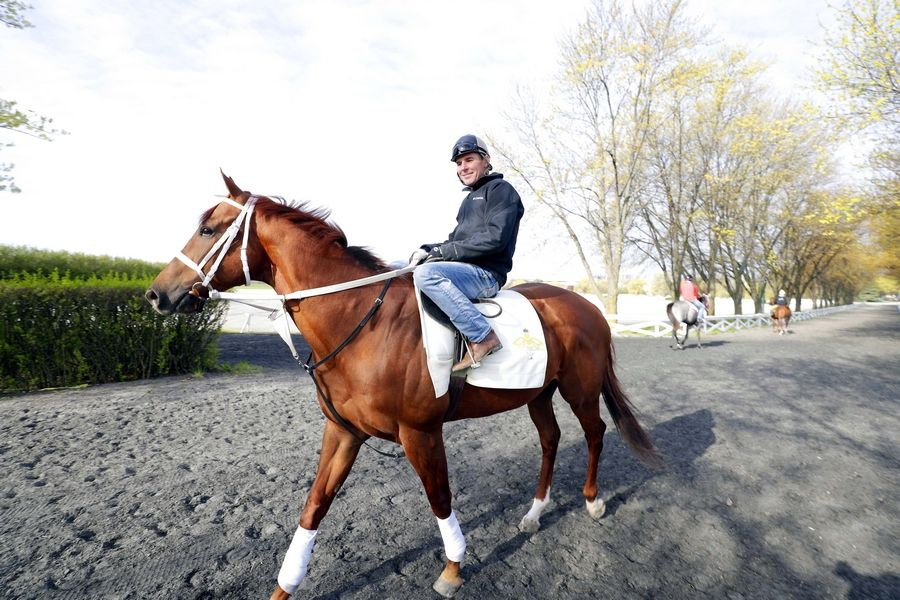 "Jockey Chris Emigh rides Duchess Friday at Arlington Park in Arlington Heights. He says many jockeys and other workers have moved to other states, but he doesn't want to join them. ""This is my home."""