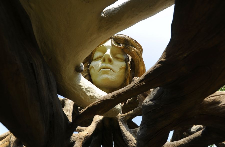"""""""The sculptures speak to our spiritual connection to trees,"""" South African artist Daniel Popper is quoted as saying on a sign in front of his """"Umi"""" sculpture at the Morton Arboretum."""