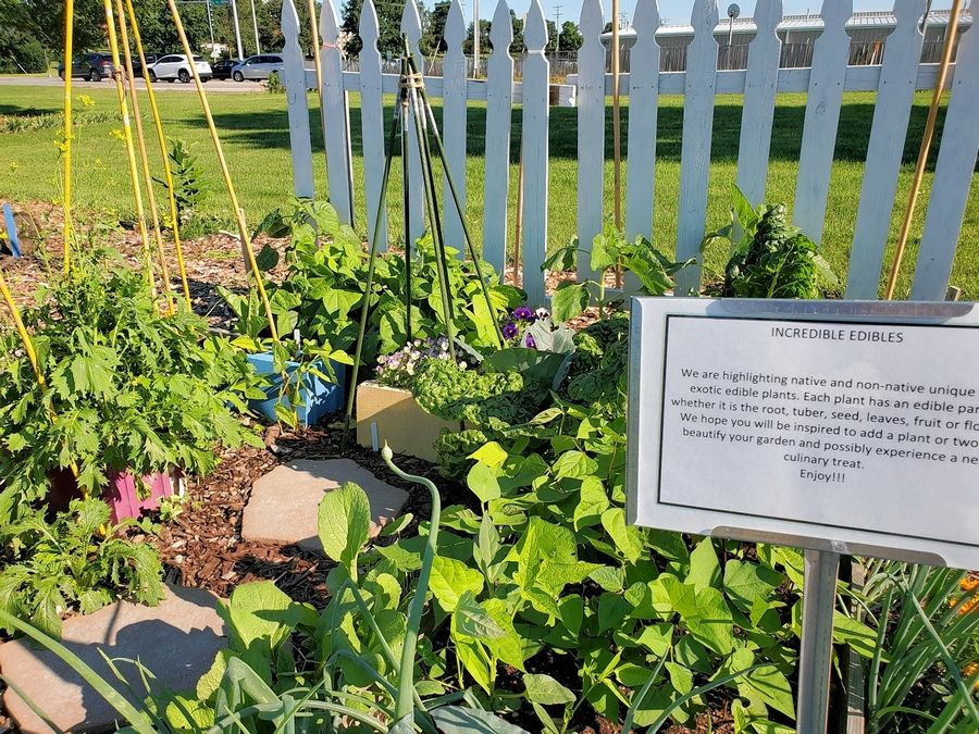 """""""Incredible Edibles"""" features native and non-native edible plants at the Kane County Master Gardener """"Gardens of ideas."""""""