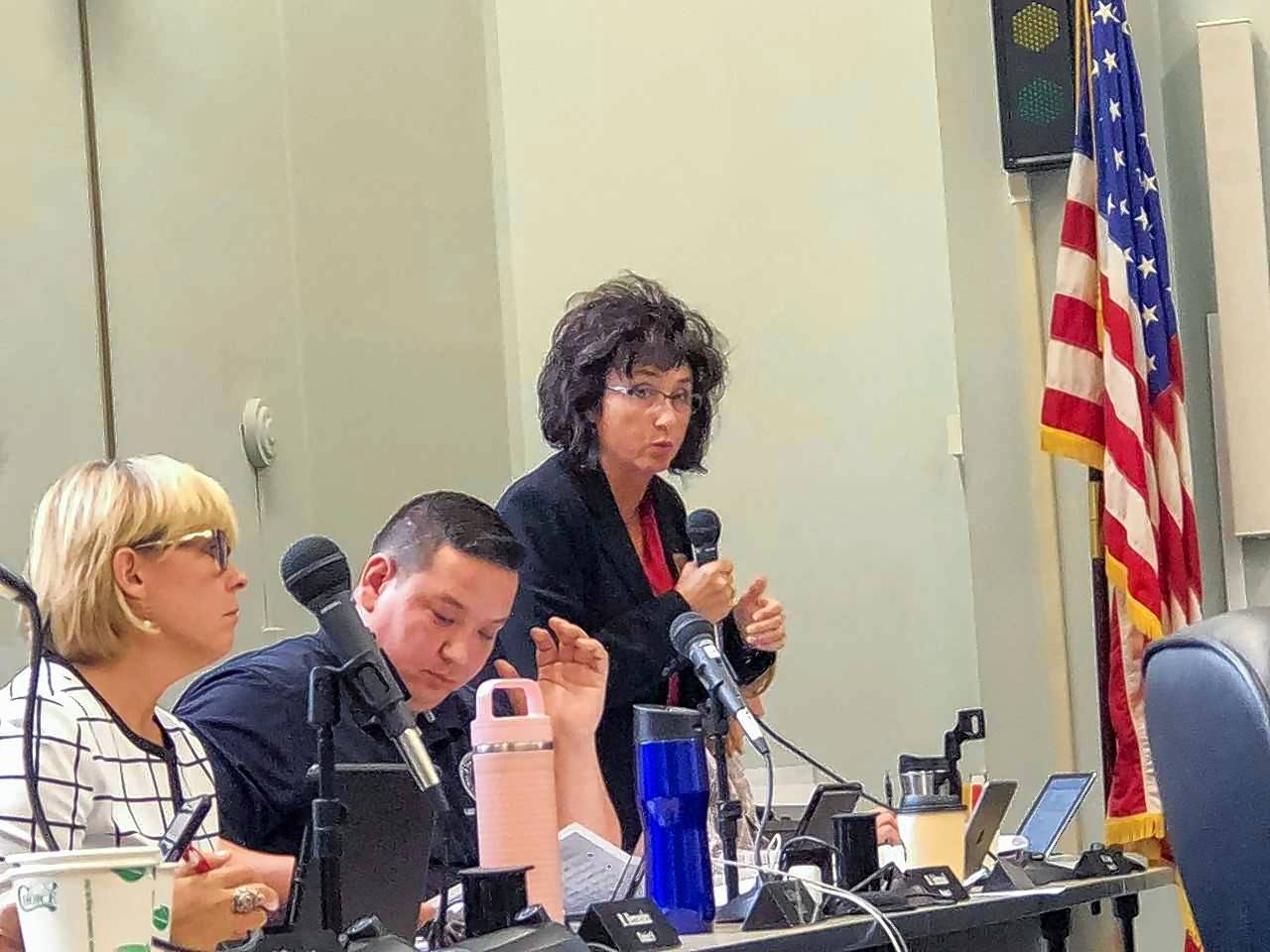Kane County Board member Theresa Barreiro spearheaded an effort to spend down reserves instead of cutting public safety to balance the 2018 budget.
