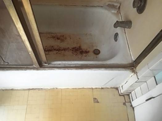 Rust had been eating away at the Gertz' shower door and bathtub in their Wheeling townhouse.