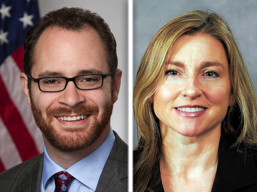 Daniel Didech and Karen Feldman are seeking the 59th District state House seat.